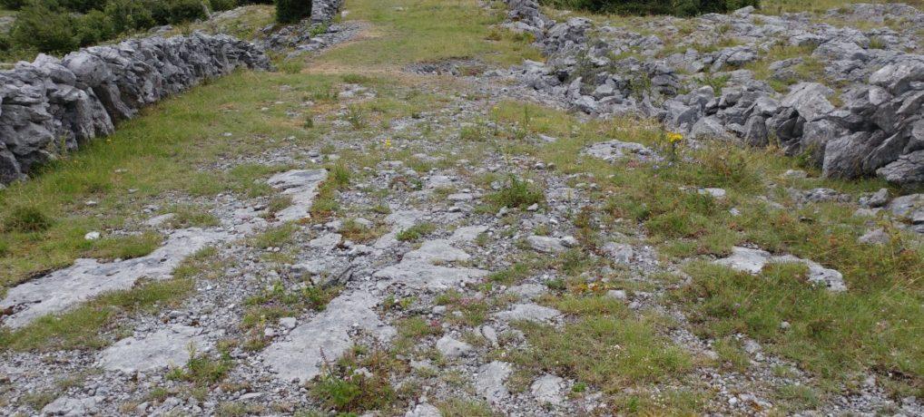 Wanderung im Burren (Irisches Tagebuch 07/18)