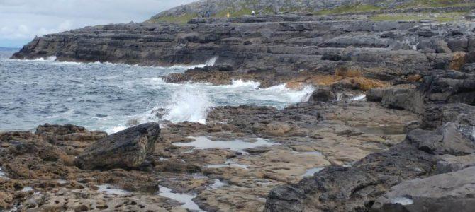 Ausflug zum Farmers' Market und Beach (Irisches Tagebuch 10/18)