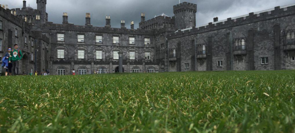 Von Wexford nach Cork (Irisches Tagebuch 04/18)