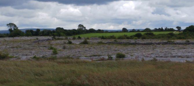 Wieder auf den Burren Way und Gartenspiele (Irisches Tagebuch 11/18)
